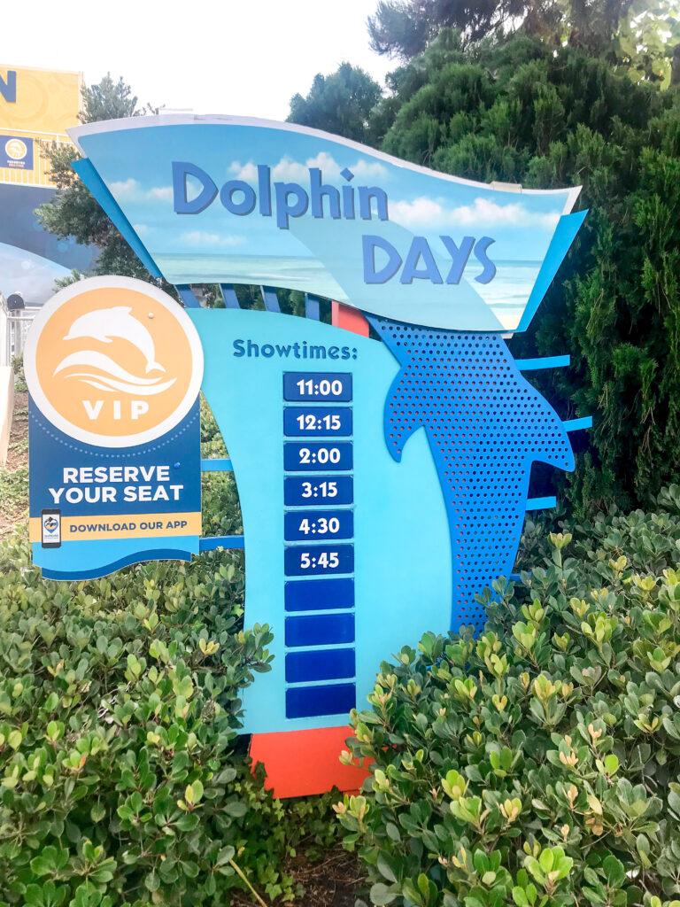 Dolphin Days show at Sea World San Diego.