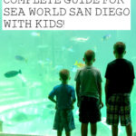 Complete Guide to Sea World San Diego with Kids